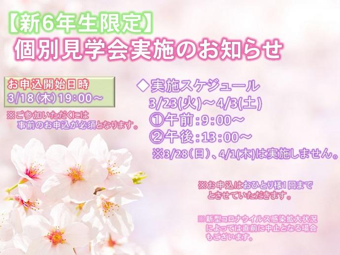 扉絵-1[1]