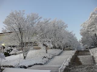 雪景色の正門前階段 予定通りに入試ができて一安心でした。