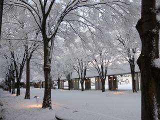 2月2日は、雪景色の中の中学入試となりました。