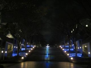 学園通りを照らすクリスマスのイルミネーション