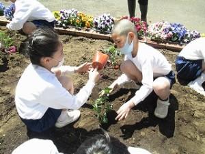 カトリック ミッション 男女 東星学園 大矢正則校長 2年生の学習(3)