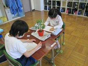 清瀬 私立 小学校 東星学園 大矢正則校長 2年生の学習(2)